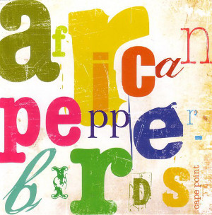African  Pepperbirds